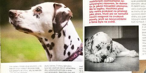 Fotky v časopise Pes přítel člověka 08/2016
